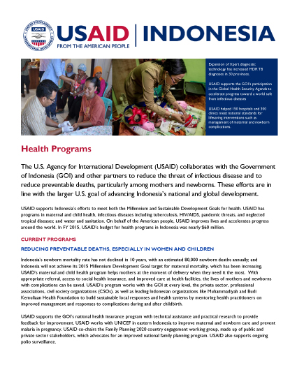 Indonesia Health Fact Sheet