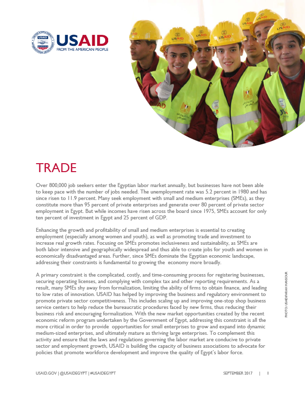 USAID/Egypt's current activities in the Trade sector.