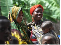 SUPPORT COMMUNITY HEALTH INTERVENTIONS TO ADDRESS NEONATAL AND CHILD HEALTH - UNICEF