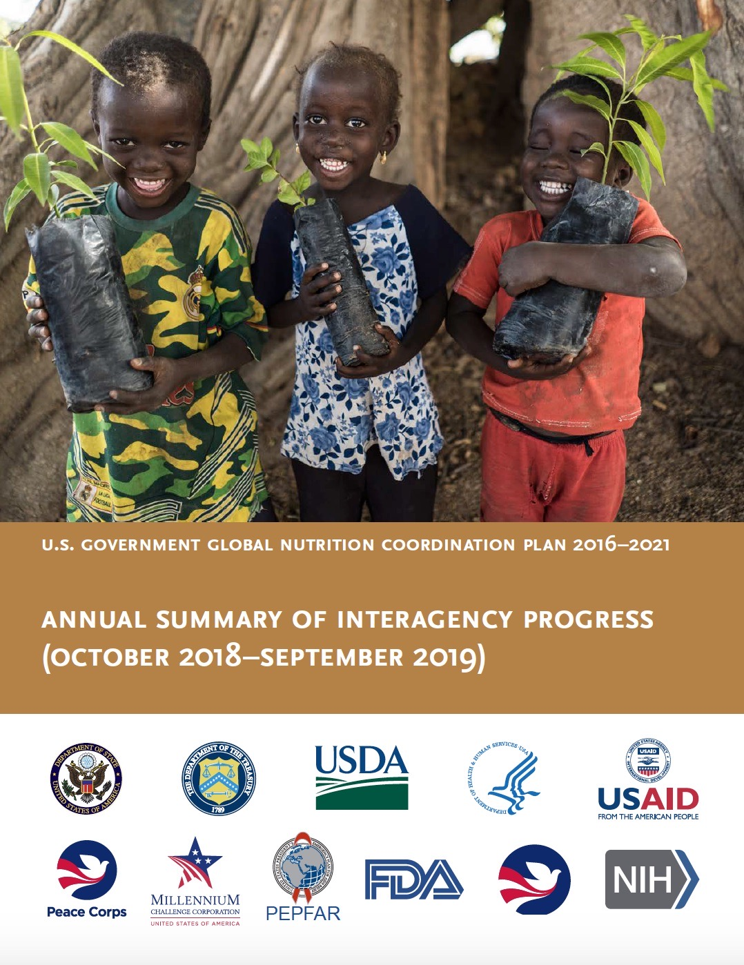 U.S. Government Global Nutrition Coordination Plan - Year 3 Report