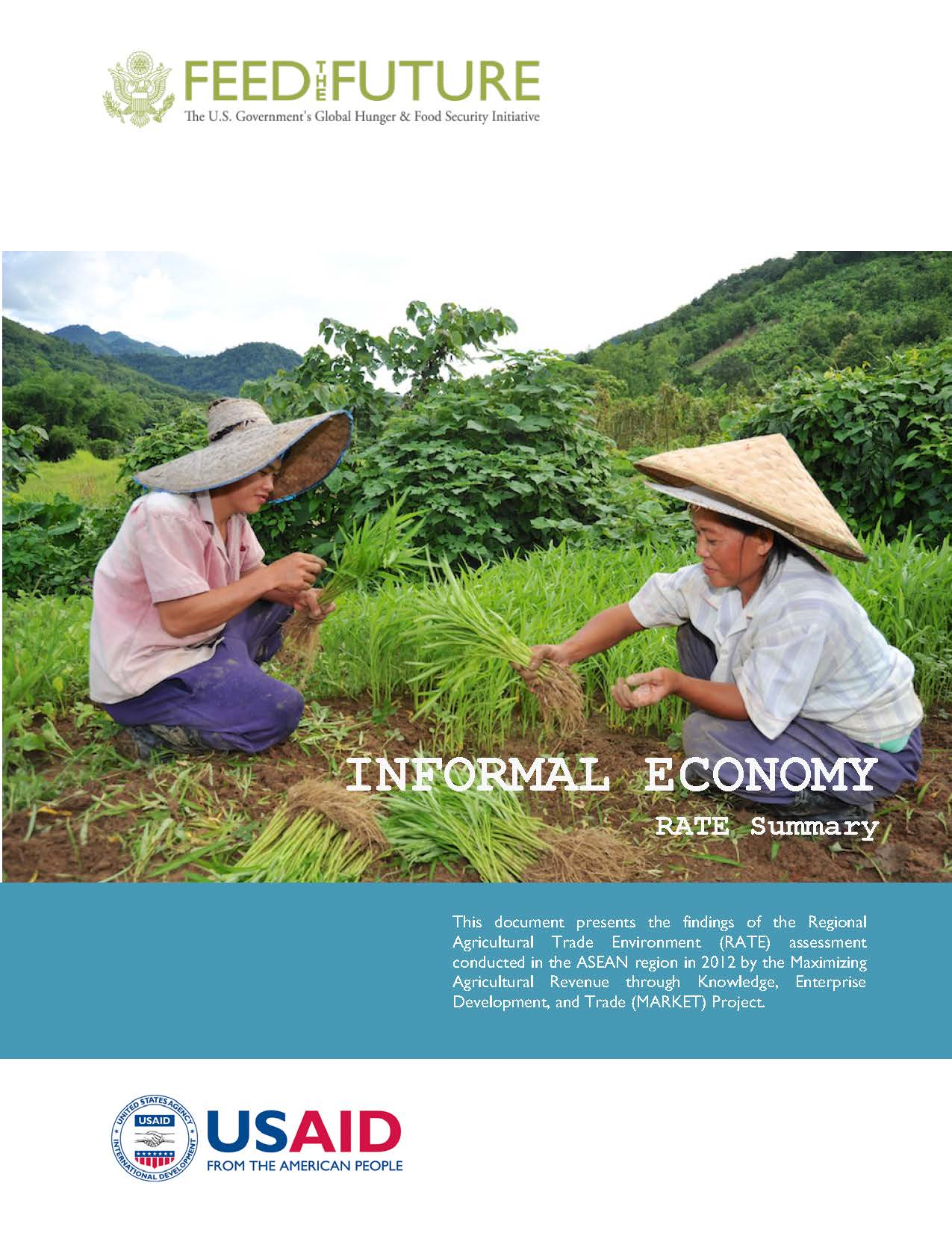 ASEAN Regional Agricultural Trade Environment Assessment Reports: Informal Economy
