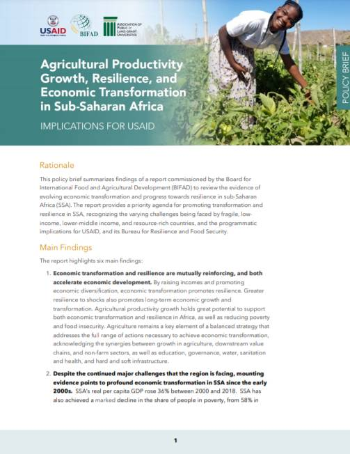 Policy Brief:  Agricultural Productivity Growth, Resilience, and Economic Transformation in Sub-Saharan Africa