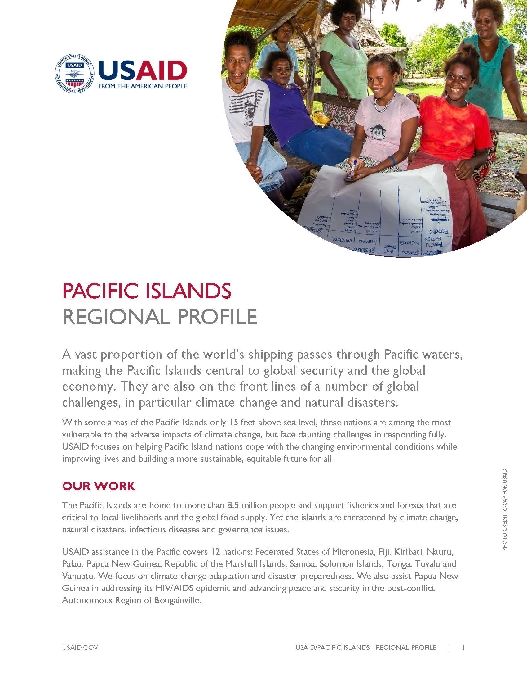 Pacific Islands Country Profile [PDF]
