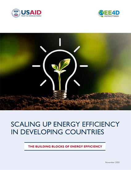Scaling Up Energy Efficiency in Developing Countries