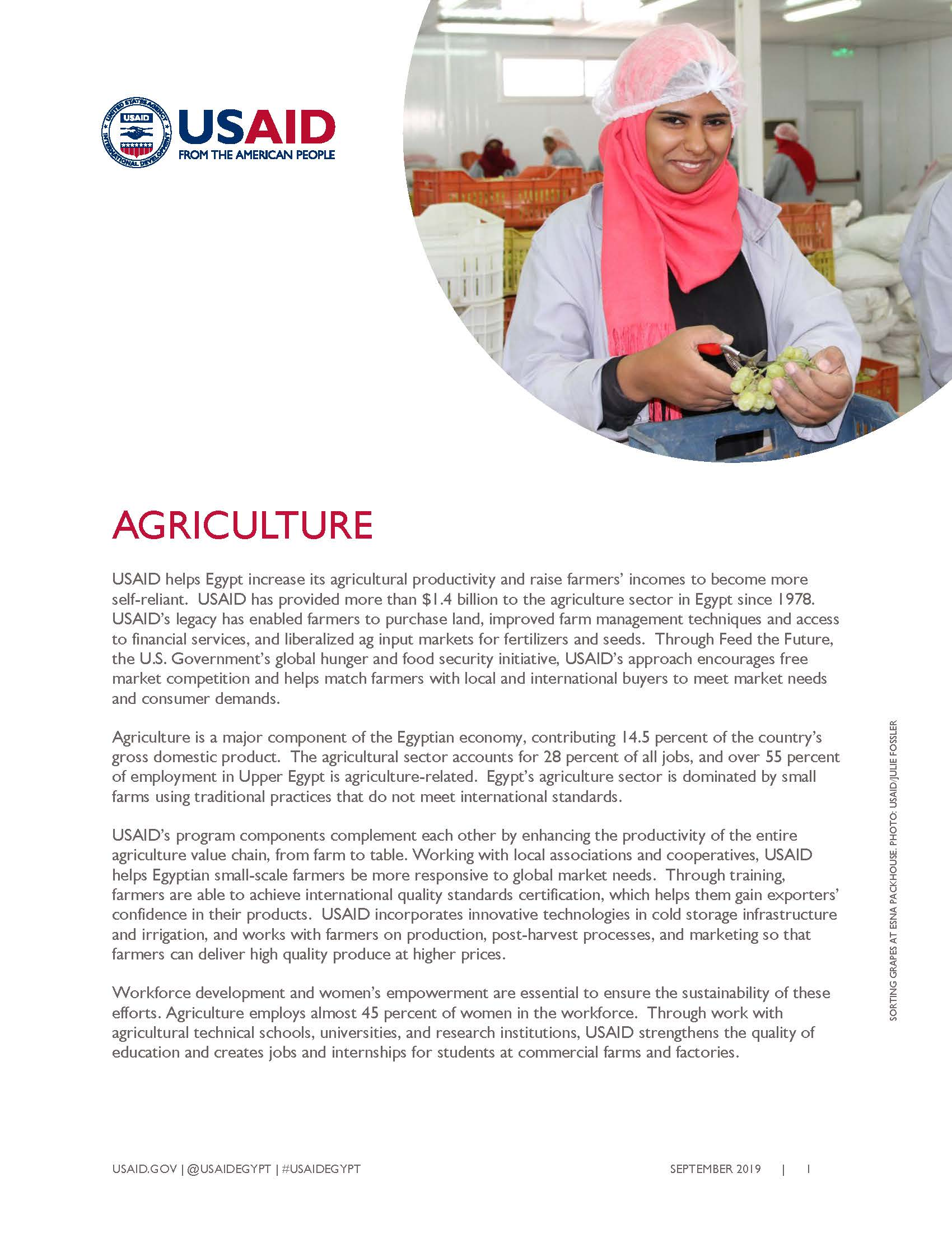 USAID/Egypt Agriculture Fact Sheet