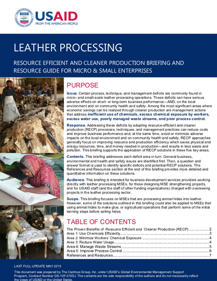 MSE Sub-Sector Briefing: Leather Processing (2013)