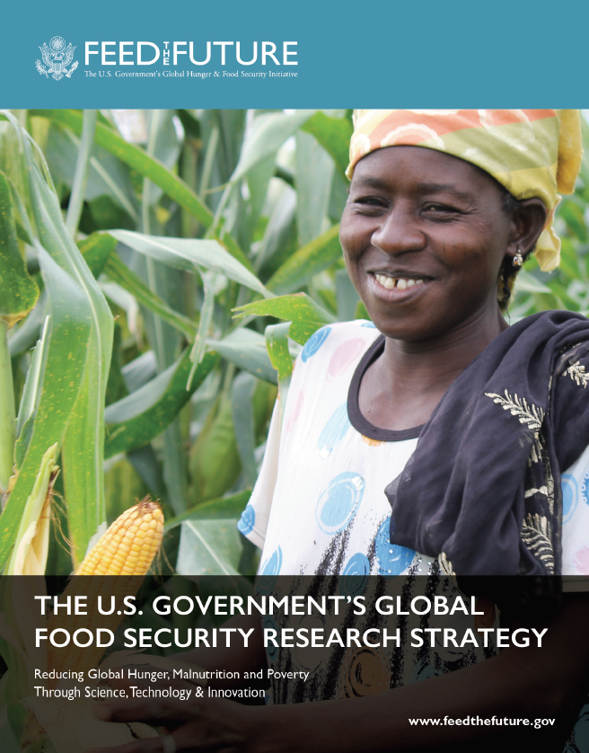 The U.S. Government's Global Food Security Research Strategy