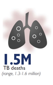 Graphic of a pair of lungs - 1.5M TB deaths (range, 1.3-1.6 million)