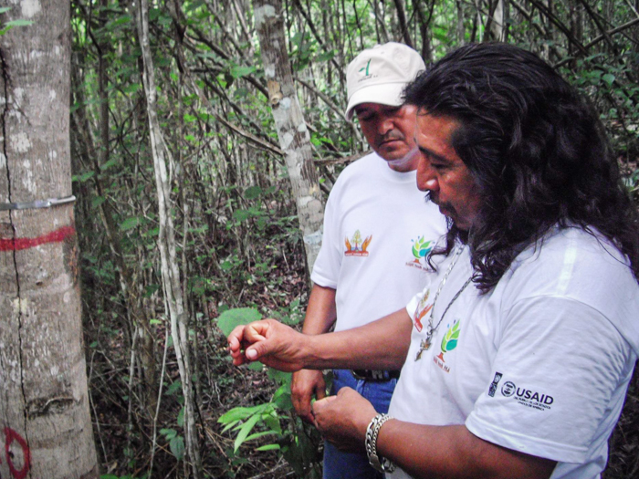 Siijil Noh Ha sustainable ecotourism project in Quintana Roo.