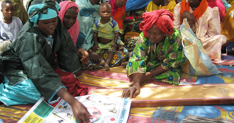 a health worker explains a poster to a group of mothers with their children SPRING Project