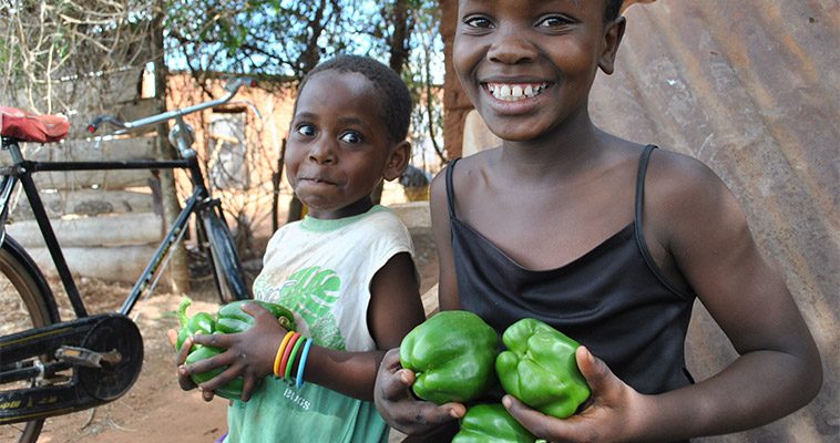 In Tanzania, Latifah Ali, 10, and Lilian, 6, hold sweet peppers given to them by their grandfather, John Mkeni, a beneficiary USAID's Tanzania Agriculture Productivity Program, part of Feed the Future.