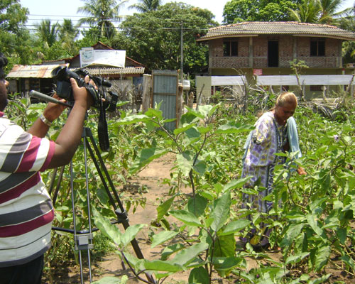 A young journalist films a documentary on livelihoods in post-conflict Sri Lanka.