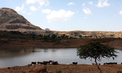 A water catchment area in the Tahtay Migaria-tsemri, Mai-Aqui site located in the Tigray region of Ethiopia that is frequently d