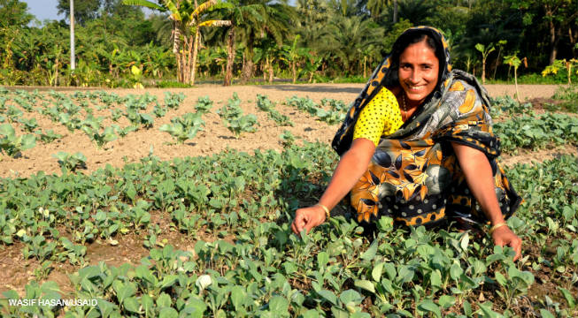Image of woman vegetable farmer in Bangladesh