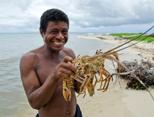 A Miskito diver holds legally sized lobsters caught by free-diving (snorkel) in the Miskito cays.