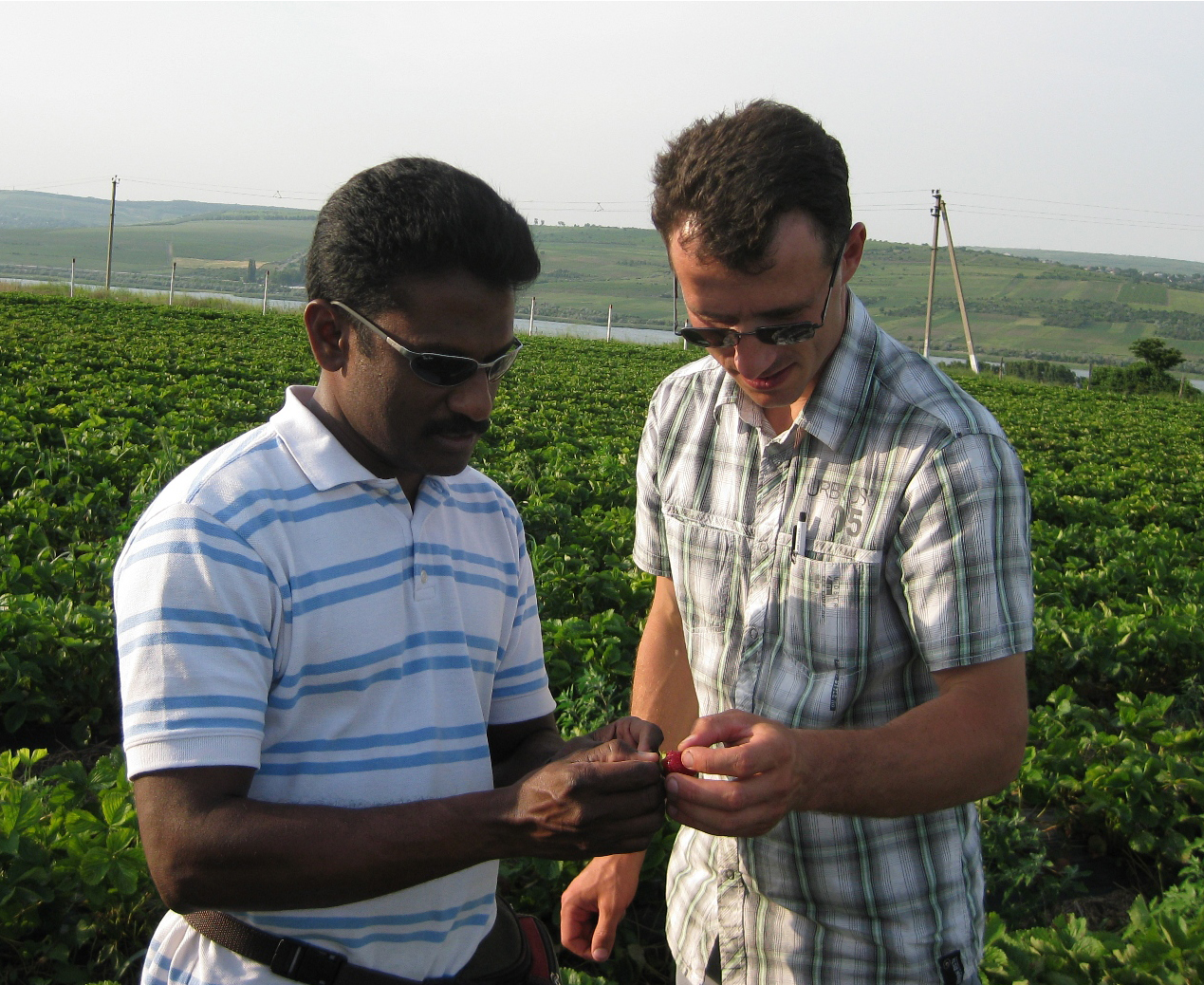 USAID Farmer-to-Farmer Volunteer Surendra Dara trains a member of farm and input supply company Agrodor Succes's management.
