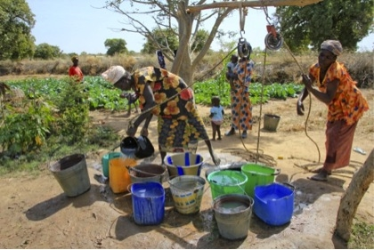 Investing in Sustainable Ag – Ridge tillage techniques in Mali have increased local water table levels, enabling women's groups