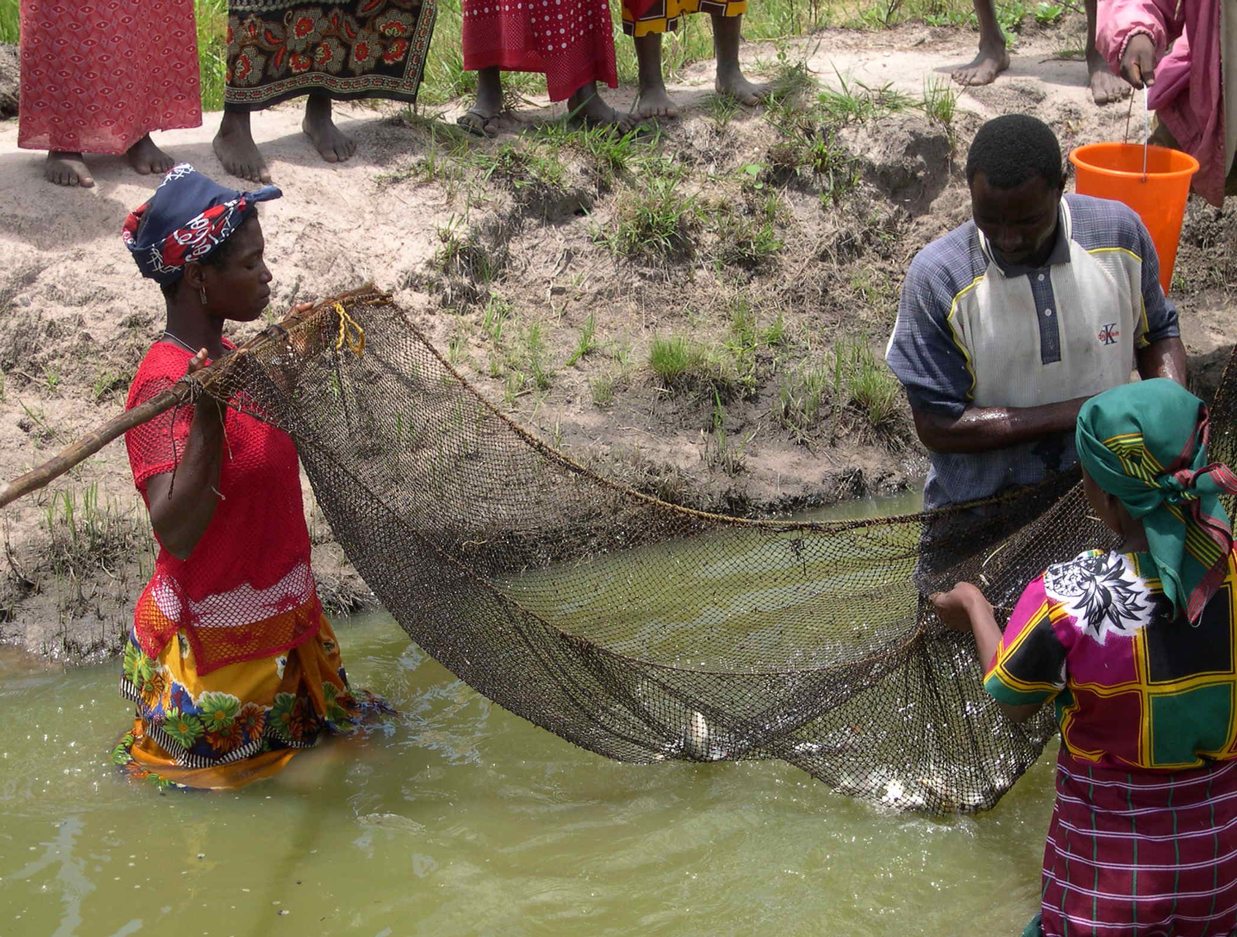 Mozambique food security
