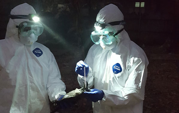 Photo of two health workers in protective suits. Photo credit: PREDICT