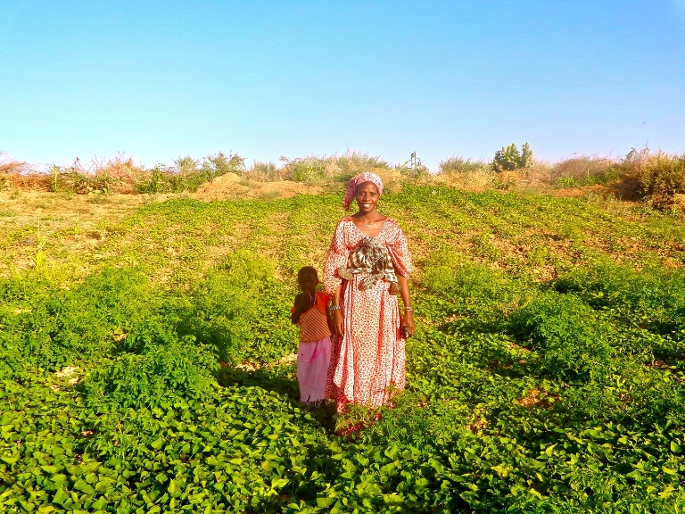 A Senegalese farmer stands in the middle of her sweet potato field