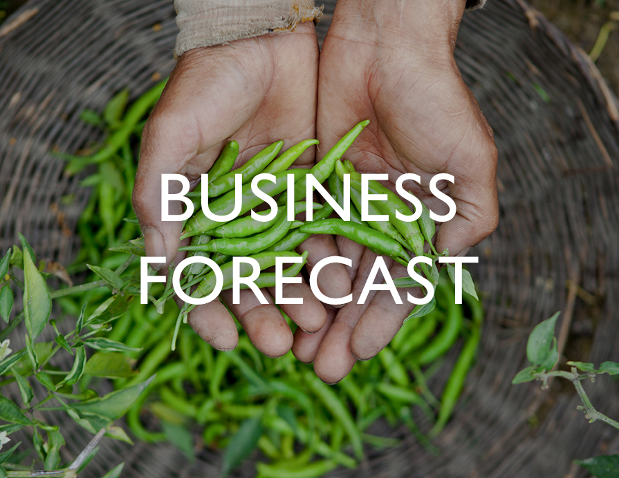 Business Forecast - A pair of hands gathering harvest from a basket
