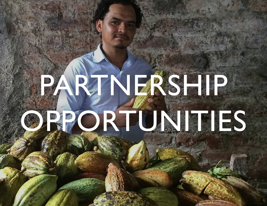 Partnership Opportunities - A man looks over his harvest