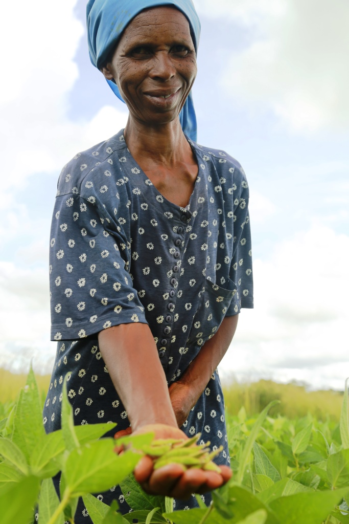 In Zimbabwe, USAID's agriculture activities increase food security and household incomes for over 180,000 small-scale farmers by