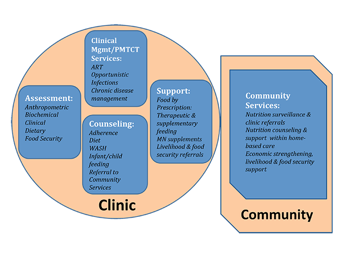 Diagram of clinic and community services