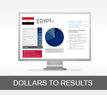 Dollars to Results tout - Egypt