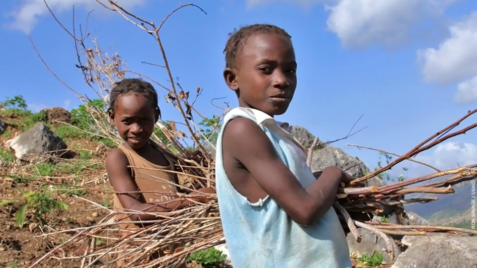 Girls collecting firewood in Haiti.