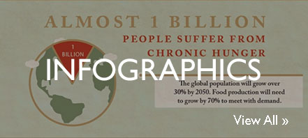 Screen grab from an infographic saying that almost 1 billion people suffer from chronic hunger.