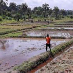 Liberia Implementing the Water Strategy