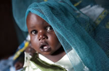 A baby looks out from beneath mosquito netting