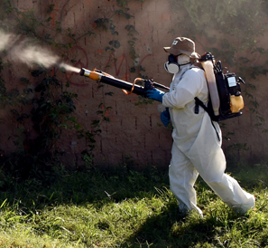 A man sprays insecticide