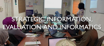 Strategic Information, Evaluation and Informatics