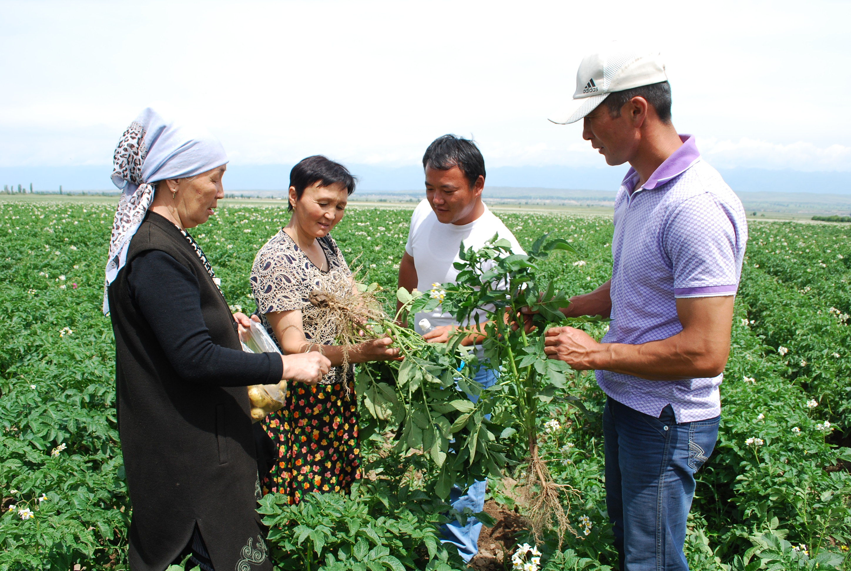 The program is supported by USAID and the Kyrgyz Ministry of Agriculture and has provided seed farms with modern ag. machinery.