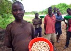 Cashew farmers and their children sell roadside as part of Mozambique's informal cashew trade. Around three-fourths of the count