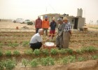 Farmers receiving training on how to prevent pests