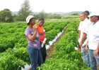 Farmer Cheryl Binns discusses her farming methods with other farmers and representatives from the Government of Jamaica.