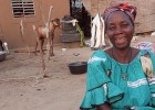 Haro Tissa supports her 11-person household in Burkina Faso by raising small livestock.