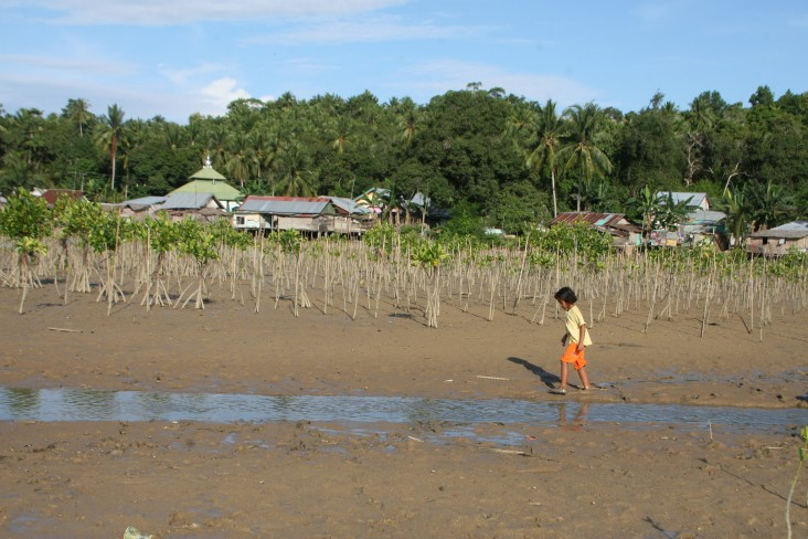A girl running on the coastal area in Kalimantan where USAID helped replant mangroves.