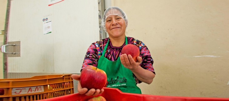 A smiling woman in an apron holds up the large fruit she is inspecting.