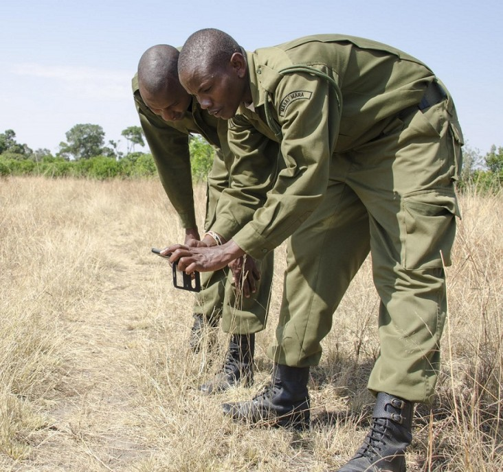 Rangers in the Masai Mara demonstrate the WILD mobile app.