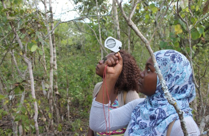 Two female forestry students practice taking tree height measurements in Bunda Forest, central Malawi.