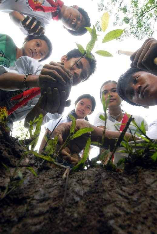 Philippino Boy Scout Siegfried Murallo and other Boy Scouts and Girl Scouts plant a mahogany tree seedling.
