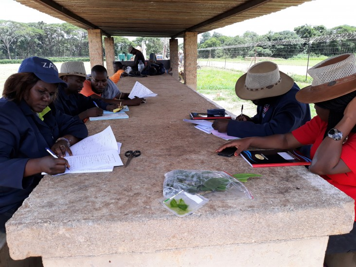 Food Security in Southern Africa