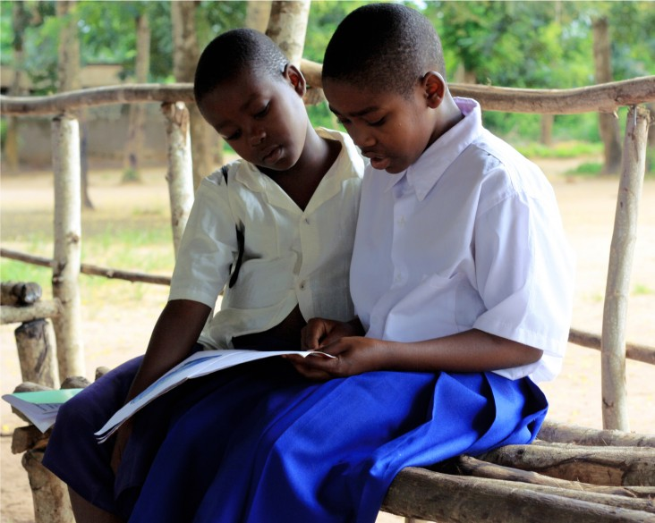 USAID partners with the Government of Tanzania to improve reading and arithmetic in the early grades.