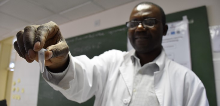 An insectary manager holds up a mosquito sample
