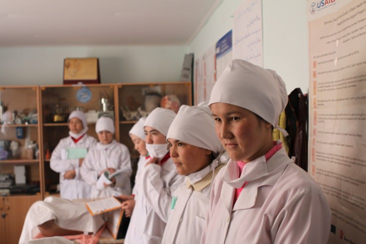 Skilled birth attendants provide essential services for pregnant women and mothers, including antenatal care, labor and delivery services, and postnatal care.