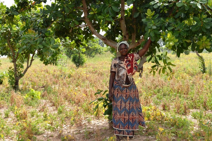 Showing off her cashew tree farm- a member of a smallholders cashew nut farmer cooperative supported by USAID